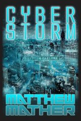 cyber-storm-2013